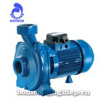 Máy bơm nước Pentax CH-CHT 150-300