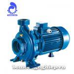 Máy bơm nước Pentax CH-CHT 350-550