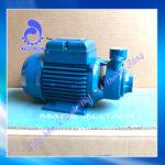 Máy bơm nước Pentax PM 801HP